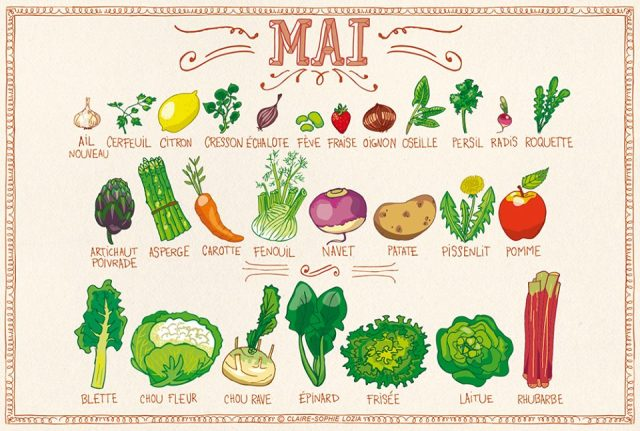 Fruits & Légumes Mai