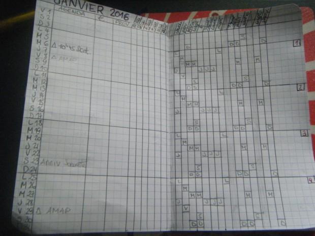 Vue mensuelle et tracker