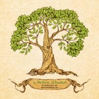 Un temps pour soi arbre avalon