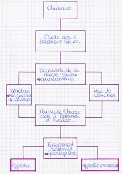 Organigramme Etudiante